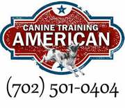 Dog Boarding and Dog Training Las Vegas,  Nevada