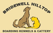 Dog Grooming San Rafael: Bridewellhilltopken